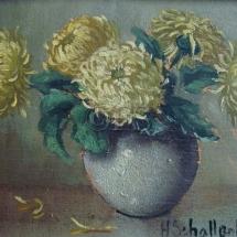 chrysant1