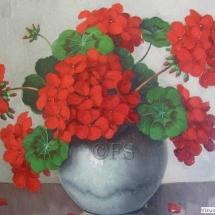 geranium14