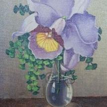 orchidee8