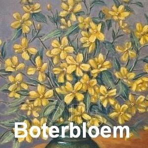 boterbloem