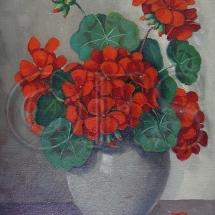 geranium29