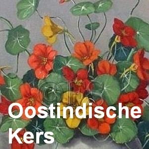oostindischekers