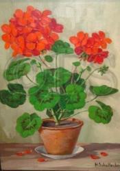 1p%geranium